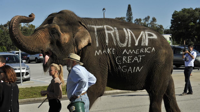 El elefante que acompañó a Trump