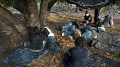 Decenas de centroamericanos tratan a diario de llegar hasta Estados Unid...