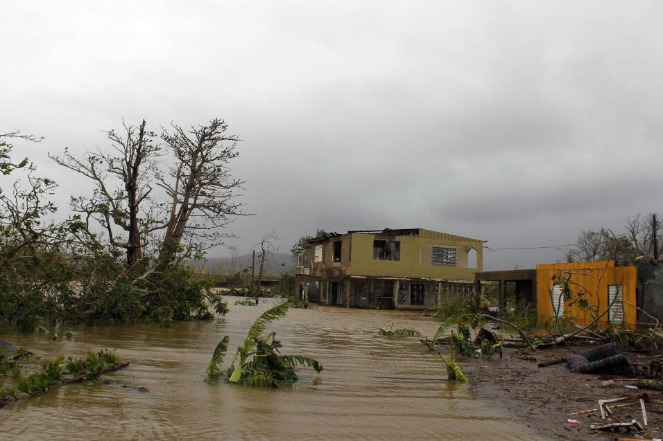 María Puerto Rico