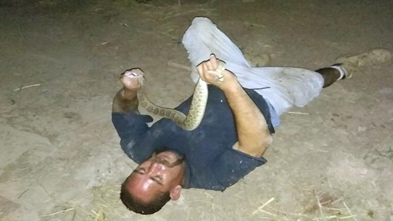 Victor Pratt cuando jugaba con la serpiente casbabel, antes de ser mordi...