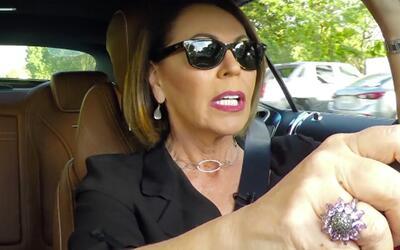maria elena salinas auto