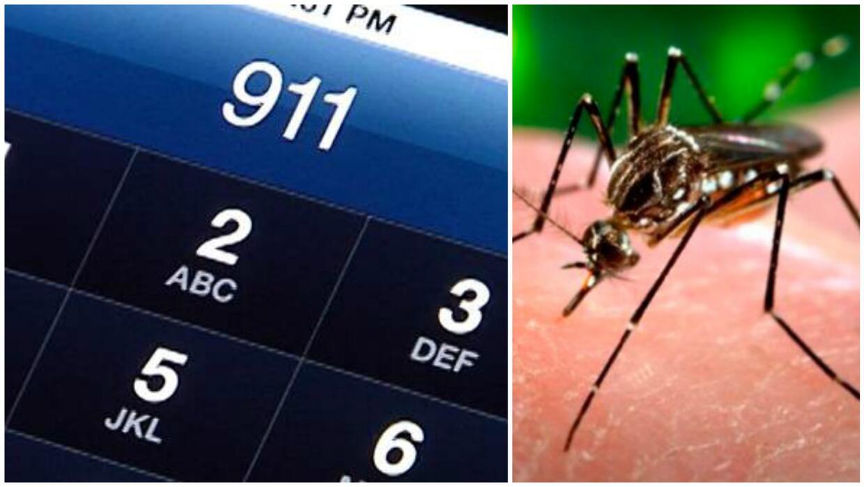 Zika 9-1-1