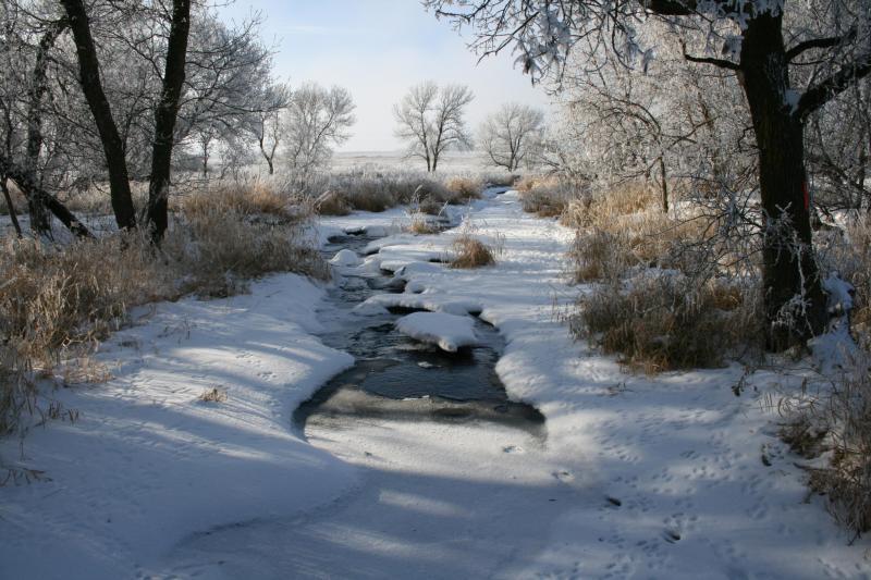Así se ve el invierno en los parques nacionales de Estados Unidos PIPEST...