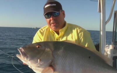 Trucos para la pesca de la rabirrubia con el capitán Diego Toirán en los...