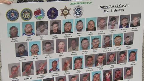 Agentes allanaron viviendas y guaridas donde arrestaron a decenas de sos...