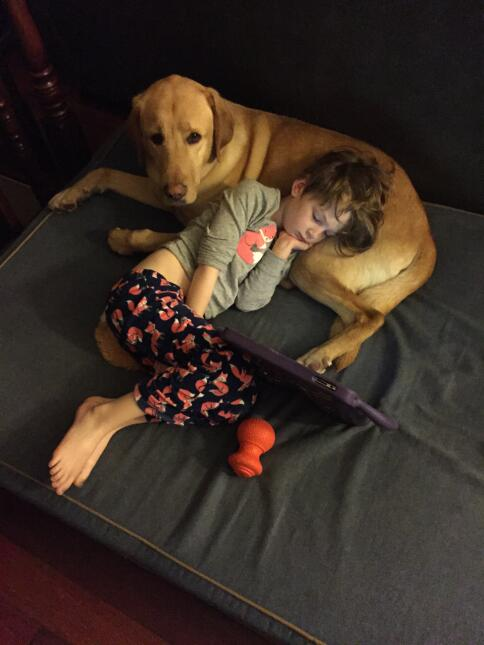 Kate's Autism Service Dog, Oakley, is her anchor and her best friend.