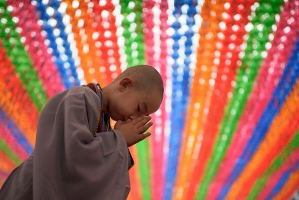 Este pequeño monje permanece en oración para celebrar a Buda.