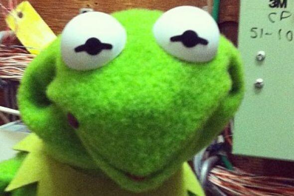 Los Muppets están muy contentos porque están a menos de un mes de estren...