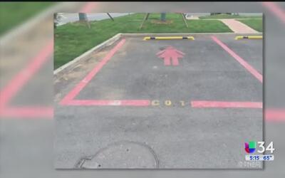 Lugares de estacionamientos rosados para mujeres causan controversia
