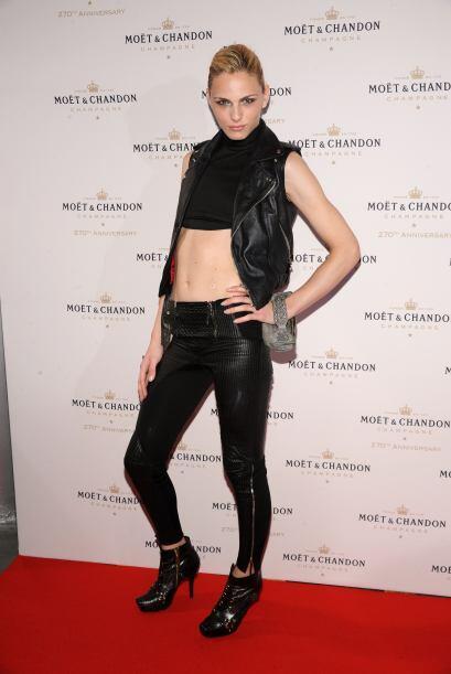 Andrej Pejic es un famoso modelo andrógino australiano, que ha brillado...