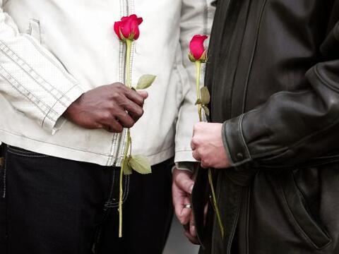 Un tribunal de anuló la prohibición del matrimonio gay en...