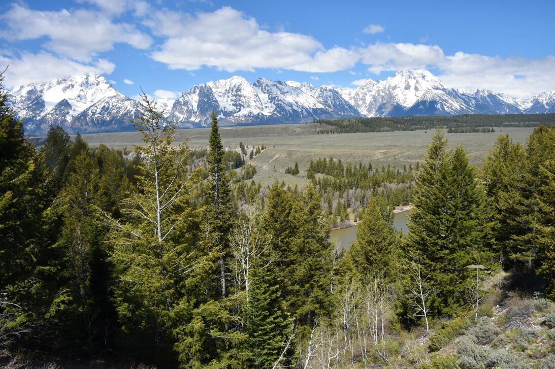 Estos son los 10 parques nacionales más visitados de Estados Unidos  GT...