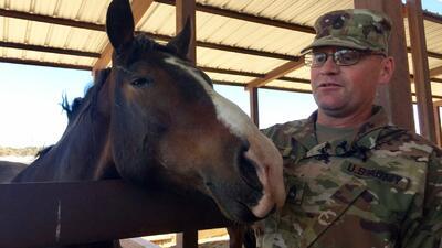 El sargento de la Guardia Nacional, Thomas Evitts, cuida los caballos de...
