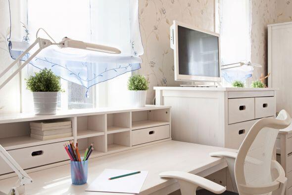 Una 'washable paint for walls' te permitirá dejar tus habitaciones impec...