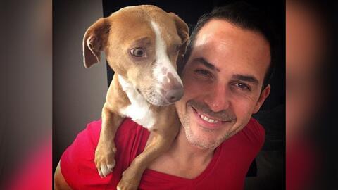 Carlos Calderón confesó que le quitaron a su perrito y casi llora al con...