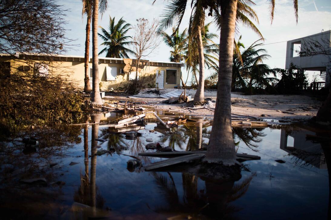 Destrucción en los Cayos de Florida: el paraíso en pausa (en fotos)  irm...