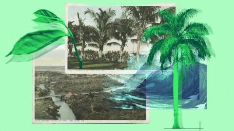 A medida que suben los niveles del mar, miles de sitios arqueológ...