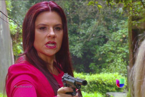 Ya no cometas más crímenes Gisela. ¿No estás contenta con todo lo que ha...