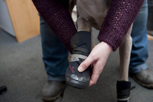 Antes de encontrar estas maravillosas botas, Julie había intentad...