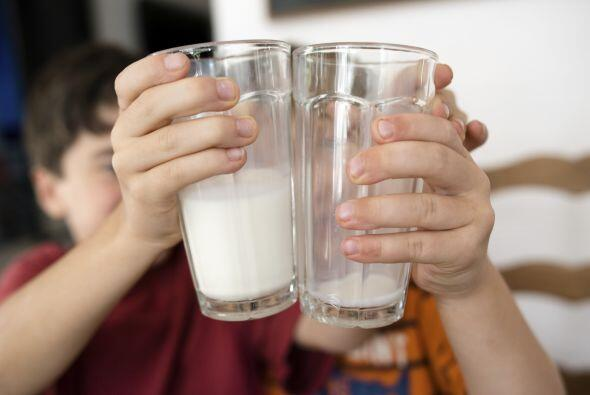Las leches vegetales están ganando popularidad, y con razó...