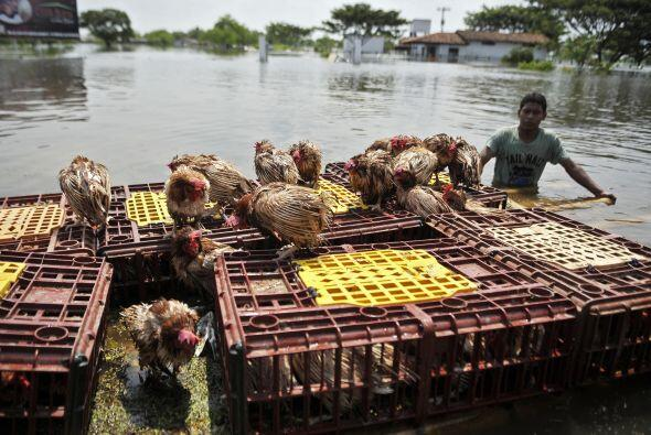 Las fuertes lluvias que han azotado al territorio colombiano han dejado...