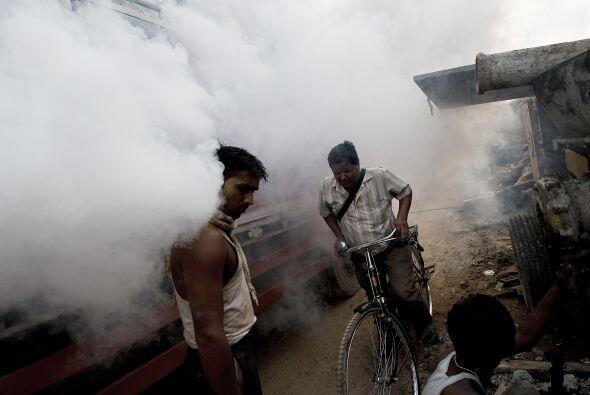 Países de América del Sur han emitido alertas por la epidemia del dengue.