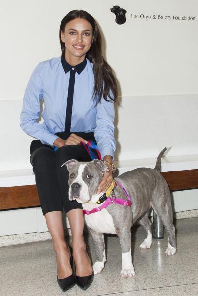 'Somos su voz', es el lema de ASPCA, refiriéndose a que la organización...