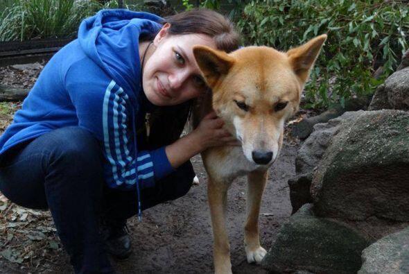 También ayuda a los animales por programas de adopción y envía dinero pa...