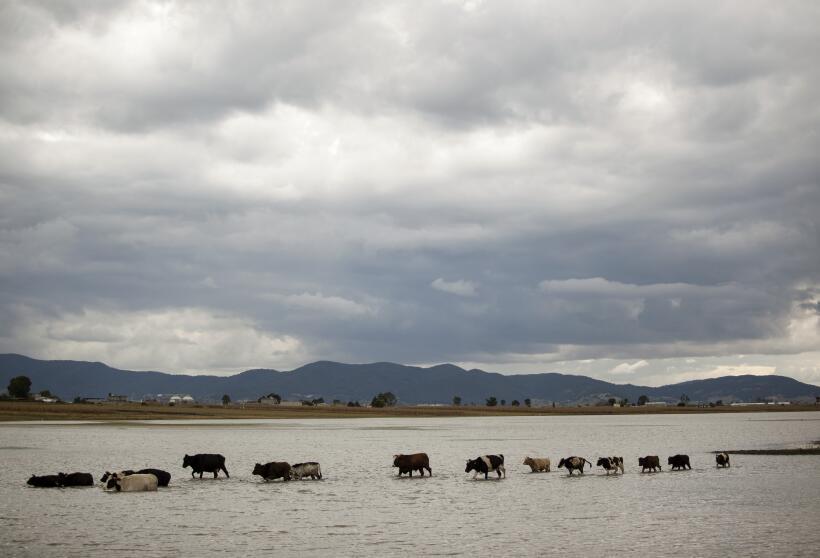 Nubes sobre las montañas de la sierra de Michoacán. Los ganaderos tuvier...