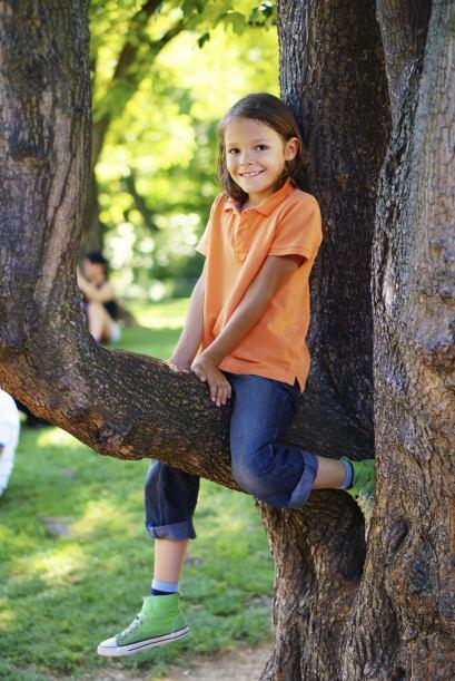 """""""Ten cuidado"""". Si se lo dices mientras se sube a un árbol, es probable q..."""