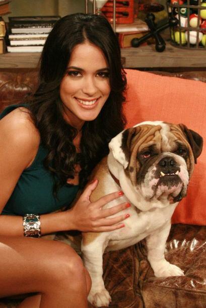 Pero sin duda quien más consiente a este can es Mi amor