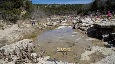 Dinosaur Valley: el parque texano que ofrece un recorrido repleto de huellas fosilizadas de dinosaurios