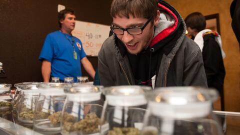 Colorado ya cumplió tres años con marihuana recreacional y...