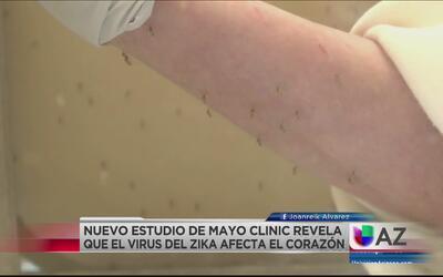 Estudio médico revela que el zika afecta al corazón