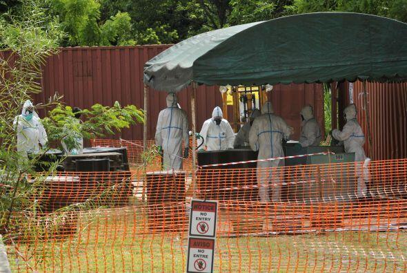 El gobierno paraguayo tiene alrededor de 5,209 toneladas de pesticidas e...
