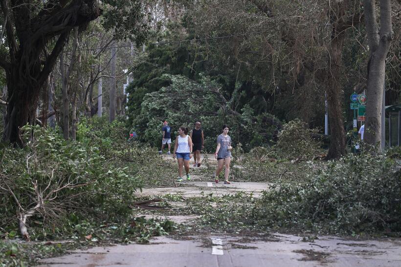 Comparación entre los huracanes Irma y Harvey: ¿cuál fue más devastador...