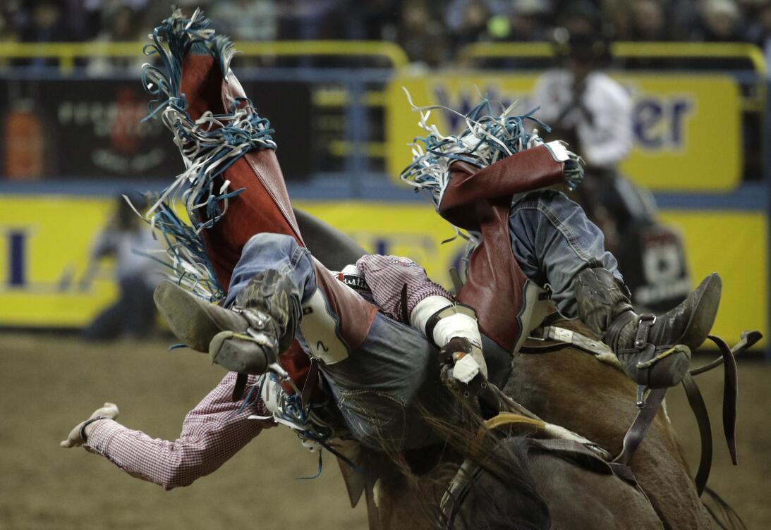 La rudeza e intesidad de los Nacionales de Rodeo en Las Vegas AP_1634320...