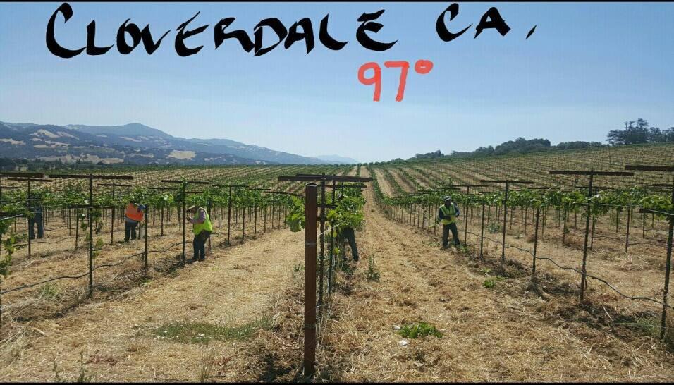 Cloverdale a 97 grados.