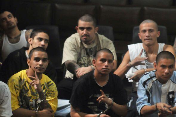 Las pandillas conocidas como la Mara Salvatrucha (MS) y la Mara 18 (M-18...