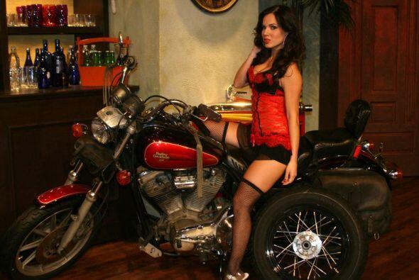 Definitivamente la motocicleta ha causado revuelo en la jauría