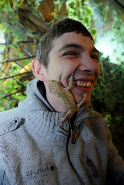 Una vez Shaun tuvo su casa atestada de reptiles, entre pogonas, dragones...