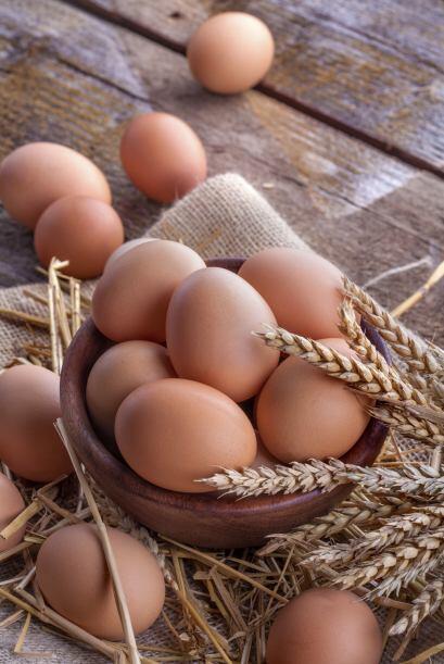 •El hígado de res, el queso y las yemas de huevo, proporcionan pequeñas...
