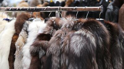 San Francisco ya prohibió la venta de ropa y productos con pieles animales