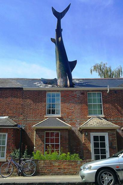 Tiburón, Oxford (Reino Unido)