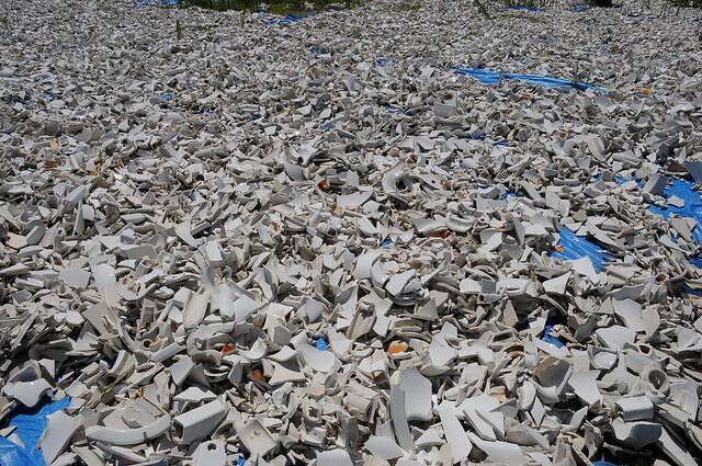 Una mirada a la instalación de 50,000 ostras en el puerto de Nueva York...