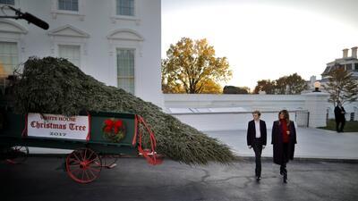 En fotos: Melania Trump recibe el árbol de navidad en la Casa Blanca