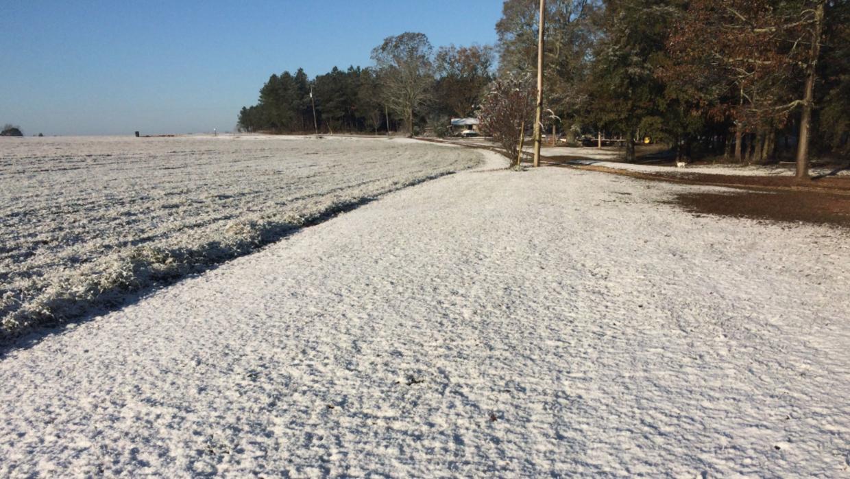 El condado de Santa Rosa, al noroeste de Florida registró una capa de ni...