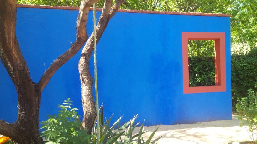 La 'Casa Azul' de Frida Kahlo llega al Jardín Botánico de Tucson  Exhibi...