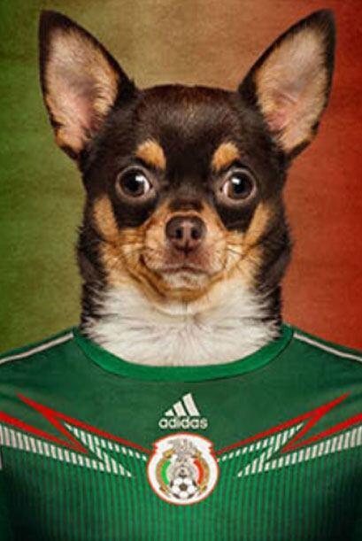 México - Chihuahua      Fuente: lifeonwhite.com   ...