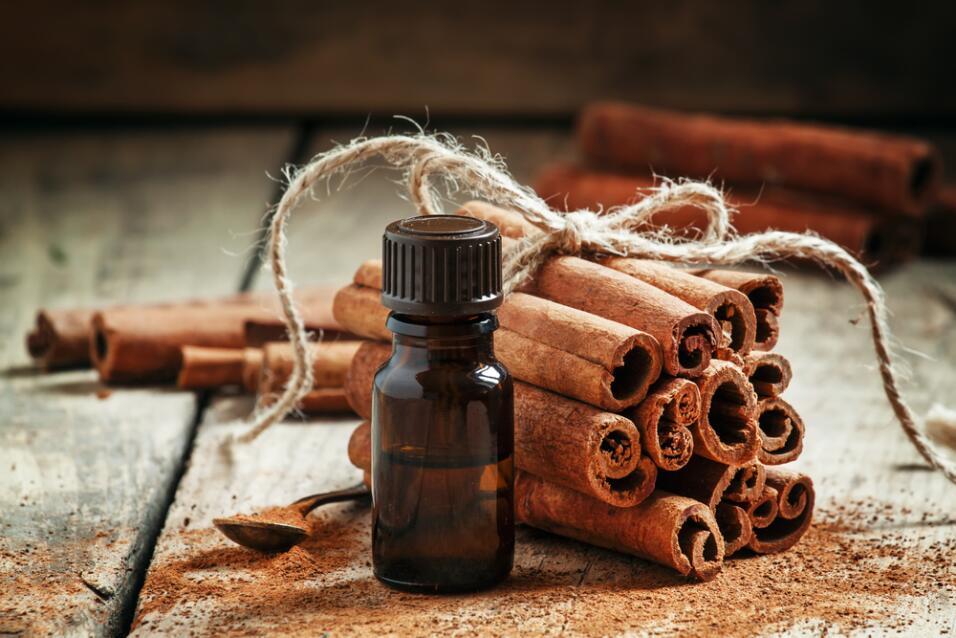 canela - esencia - aceite